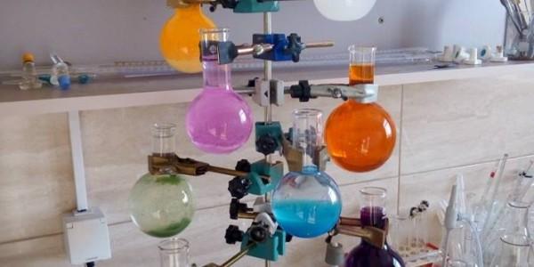 Brăduțul Laboratorului de chimie