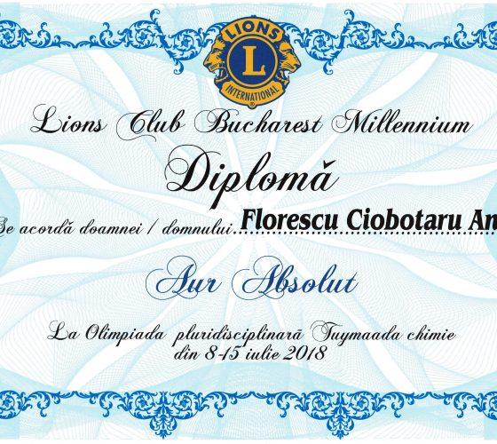 Ciobotaru Florescu Ana CD Nenitescu medalie de Aur diploma